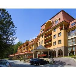 Hotel Lysec****